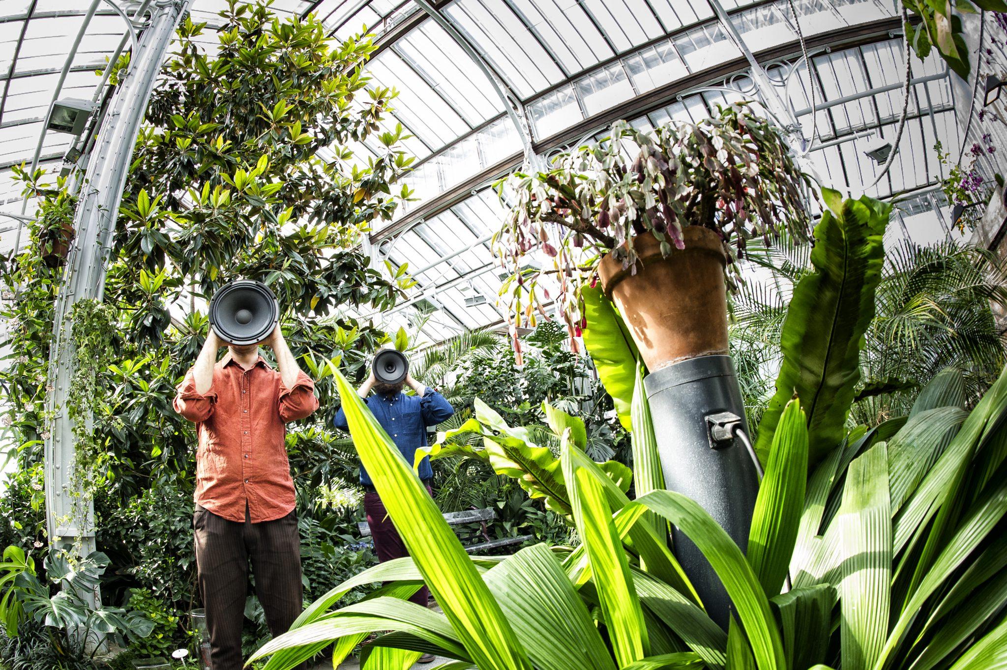 IN-SITU: Sonic Greenhouse /Äänipuutarha by Otso Lähdeoja and Josué Moreno. Photo: Uupi Tirronen